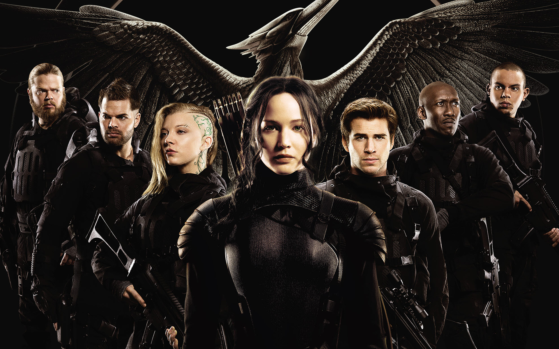 The Hunger Games Mockingjay Part 1 Movie Wallpapers HD Wallpapers 1920x1200