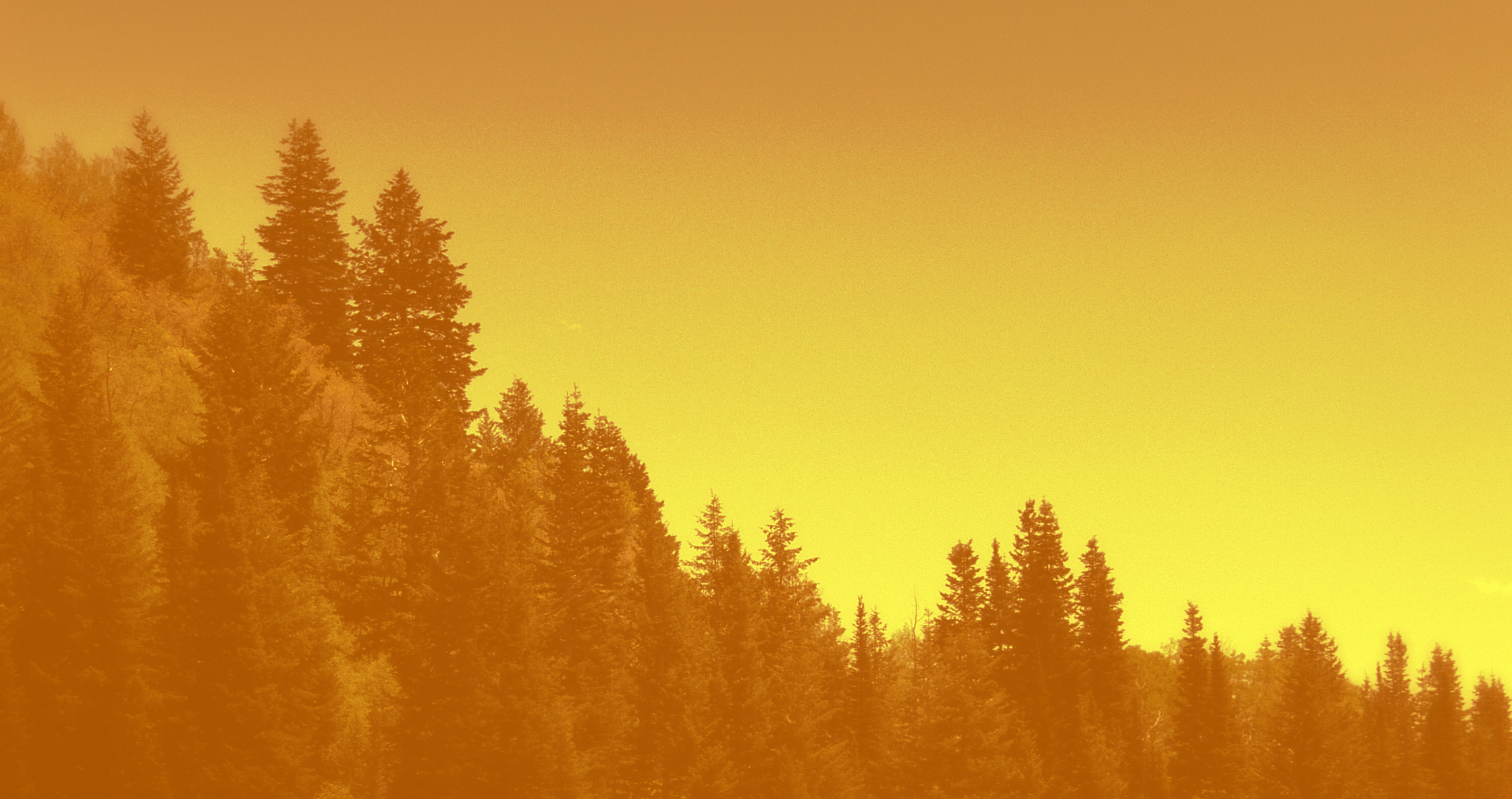 Mountain Trees Abstract Backgrounds Royalty   Stockazoo 2240x1184