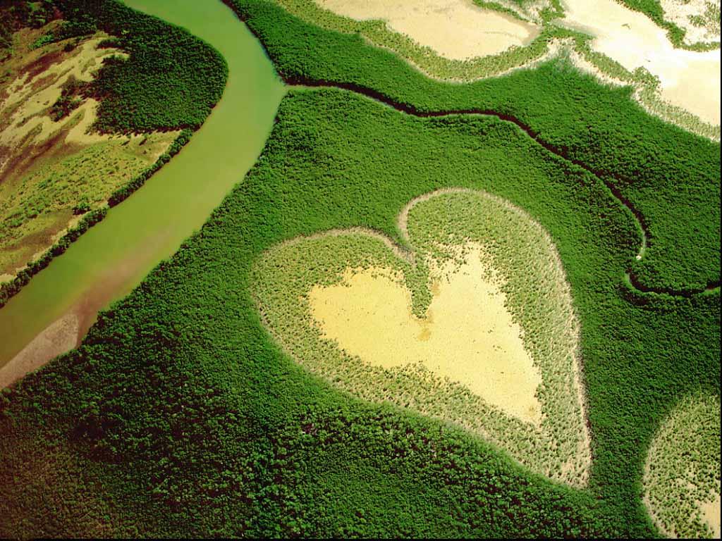 Nature Love Wallpaper Hd: Love Nature Wallpaper
