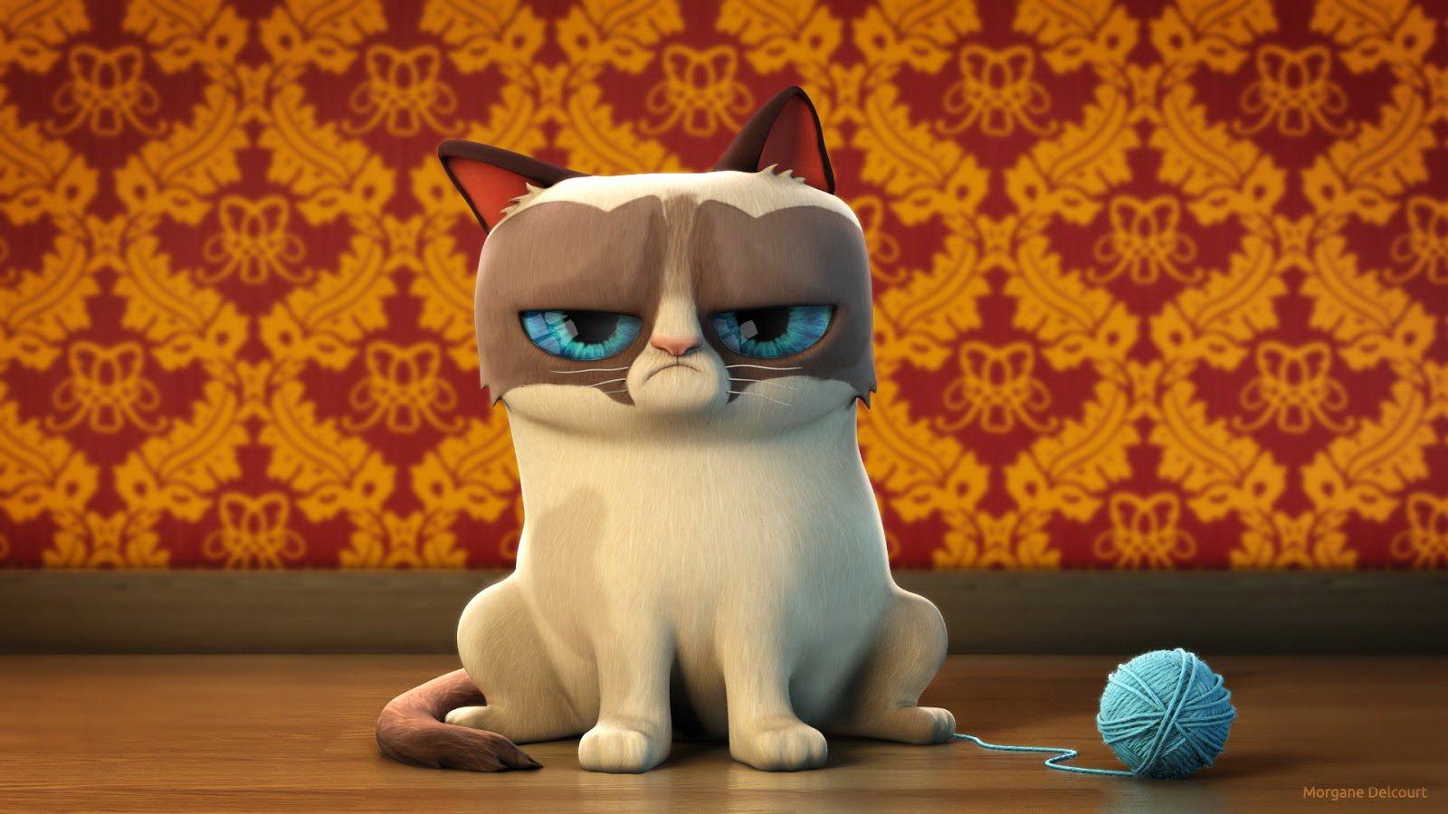 Cat meme quote funny humor grumpy 112 wallpaper 1600x900 355195 1600x900