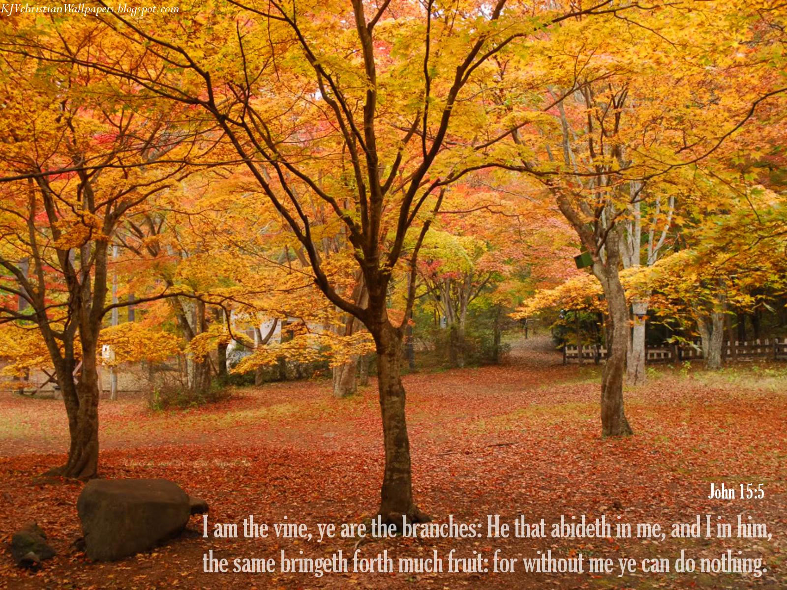 Fall Pictures with Scripture httpkjvchristianwallpapersblogspot 1600x1200