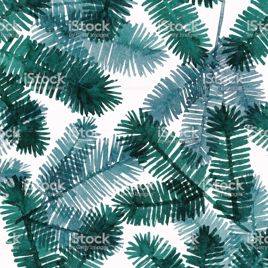 Watercolor Background With Pine Tree Twigs Stock Illustration 1024x1024