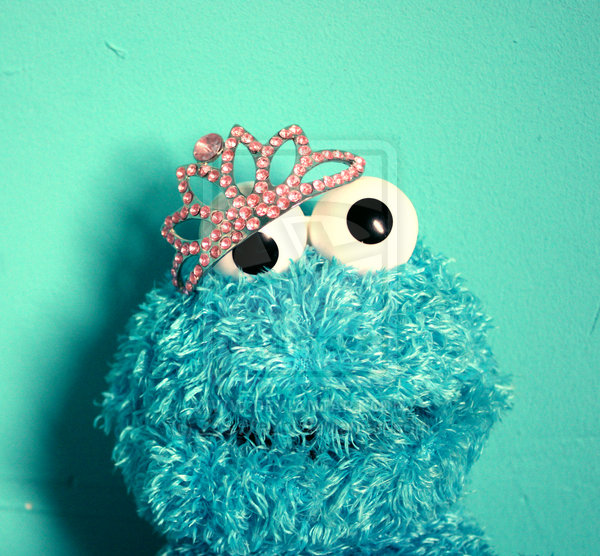 Cute Cookie Monster Wallpaper Princess By 600x556