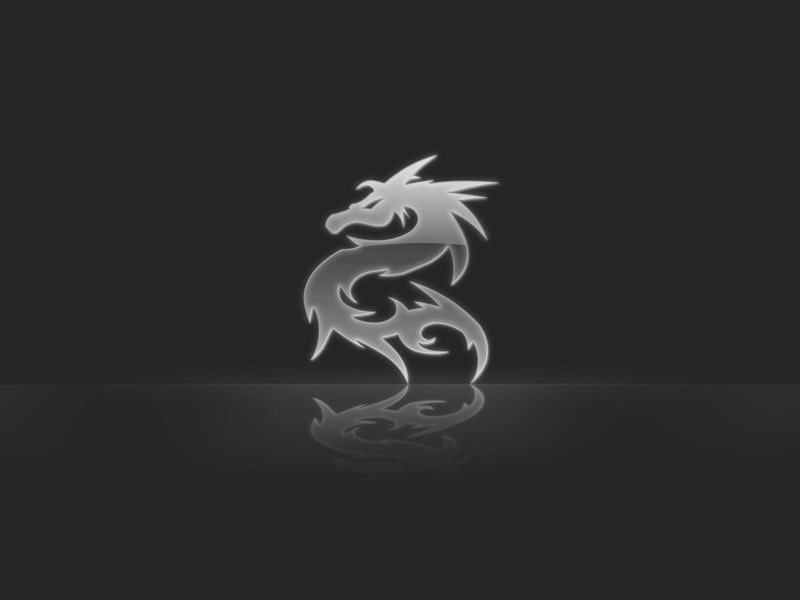 White And Black Dragons Wallpaper Dragon wallpapers 1600x1200