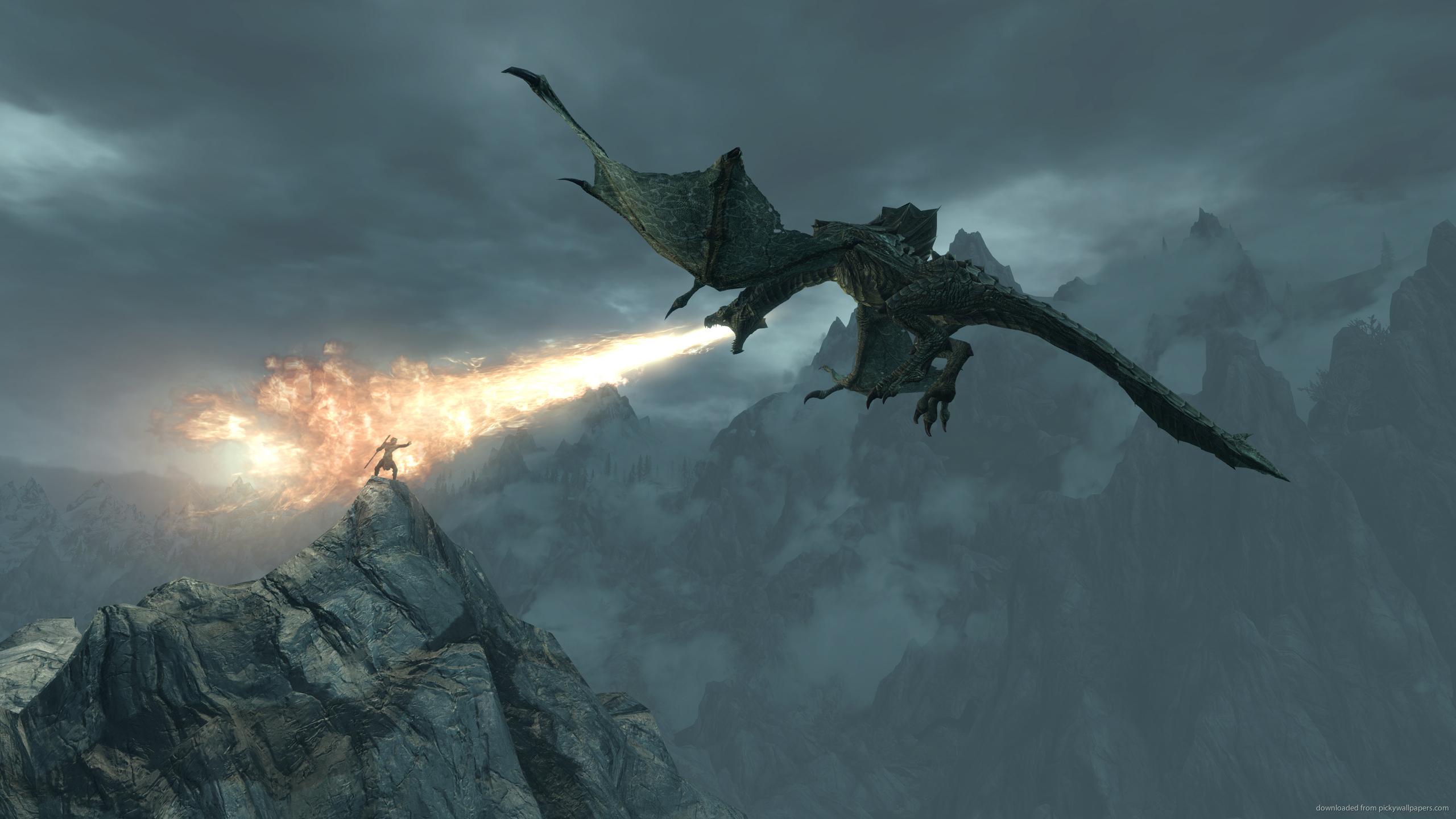 Skyrim Epic Dragon Breath wallpaper 2560x1440