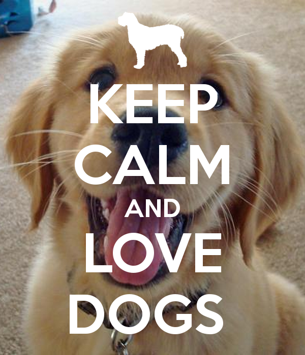 I Love Dogs Wallpaper