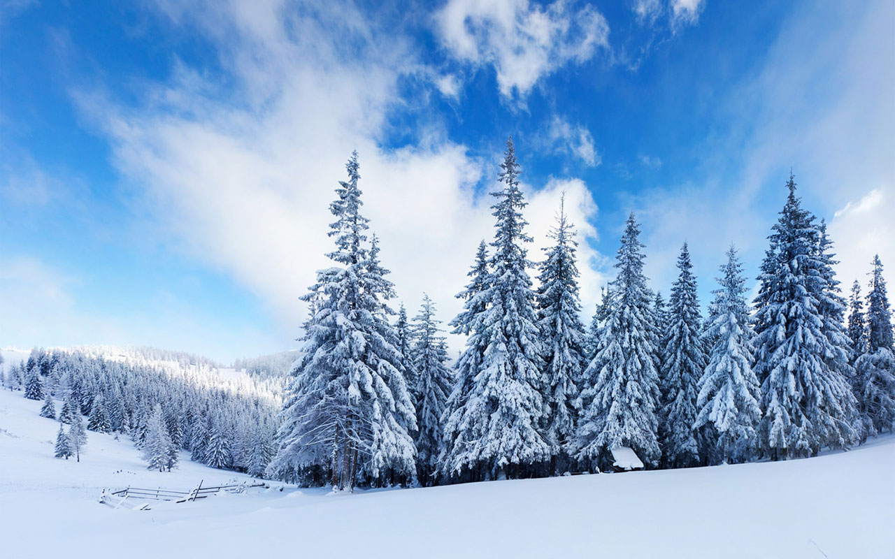 Desktop Backgrounds Winter wallpaper Windows Desktop Backgrounds 1280x800
