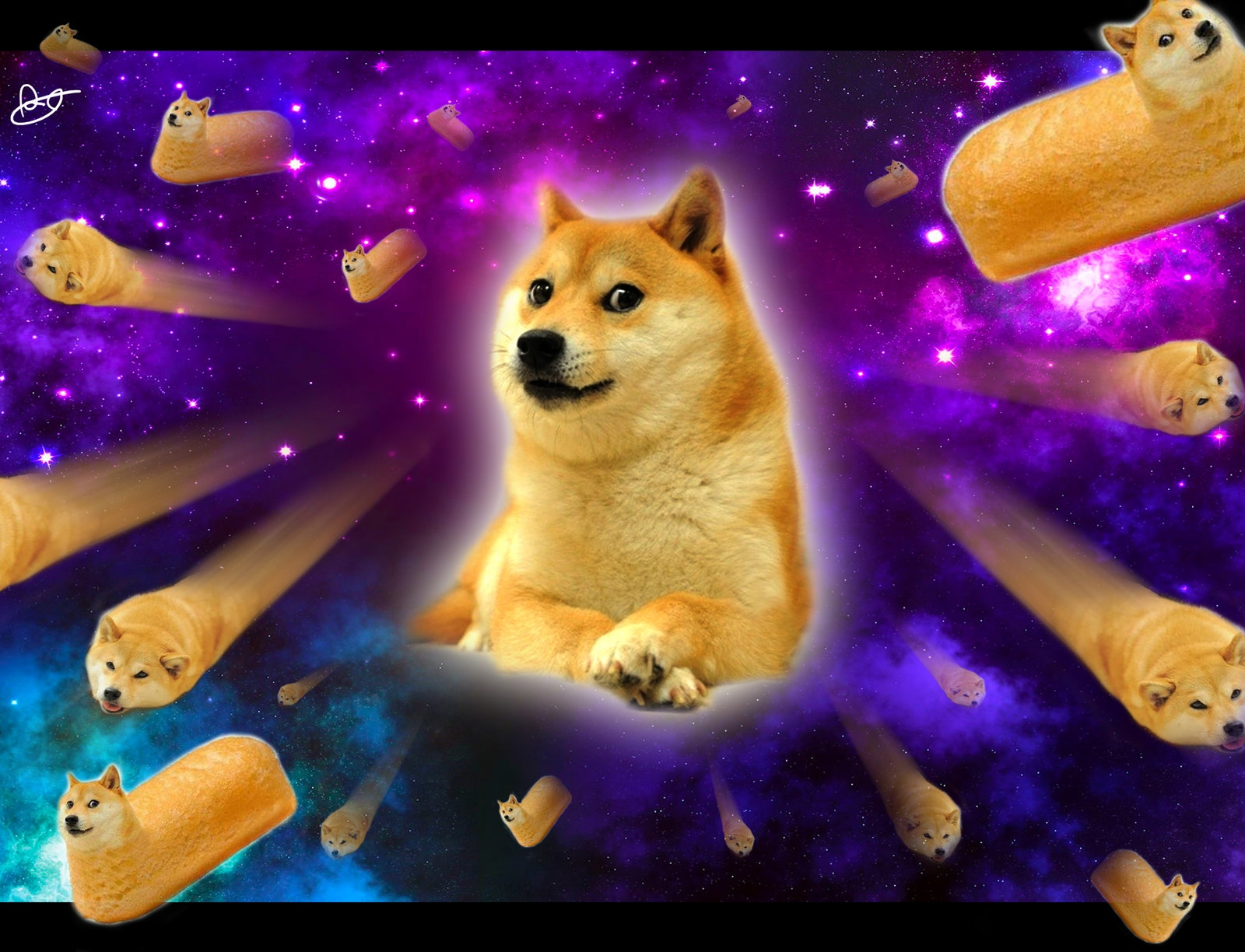 14011 doge in space - photo #8