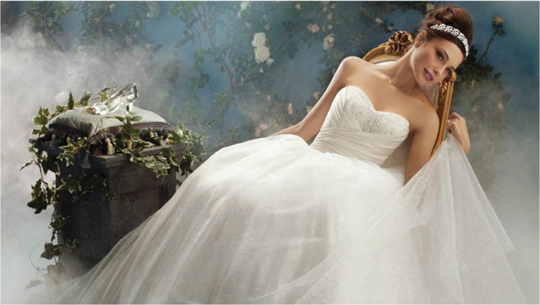 Wedding Dresses Disney Princess HD Wallpaper HDwallpaper2013com 1080x611