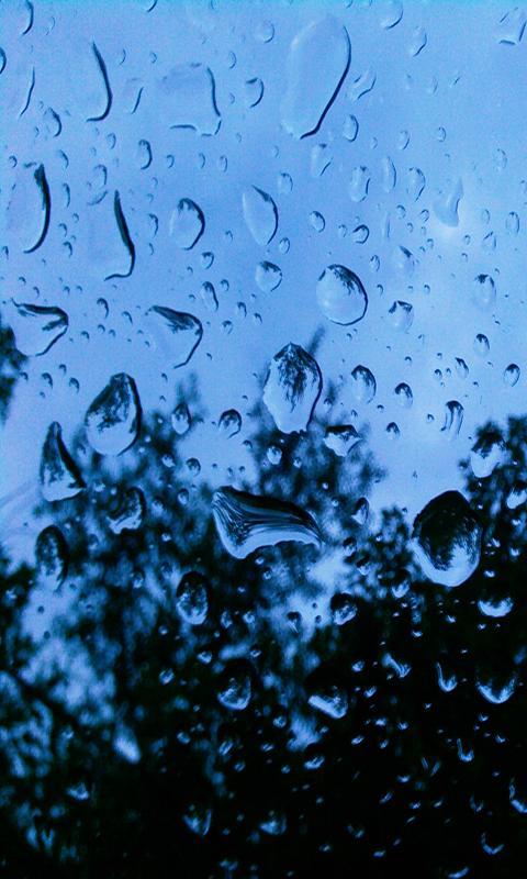 Rain Live Wallpaper   screenshot 480x800