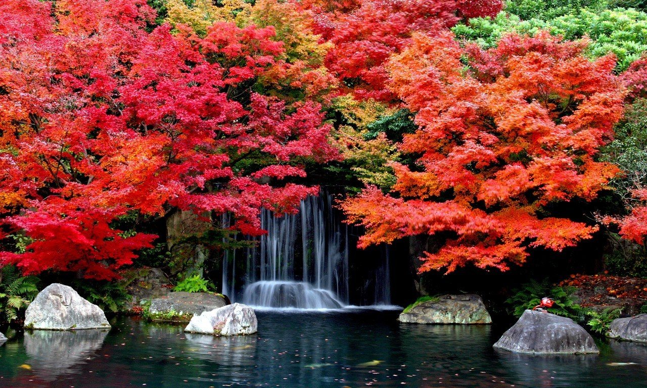 Free Download Autumn Falls Desktop Background Hd Wallpapers Fall Backgrounds 1280x768 For Your Desktop Mobile Tablet Explore 68 Fall Desktop Background Fall Desktop Wallpaper Hd Fall Wallpaper For Desktop