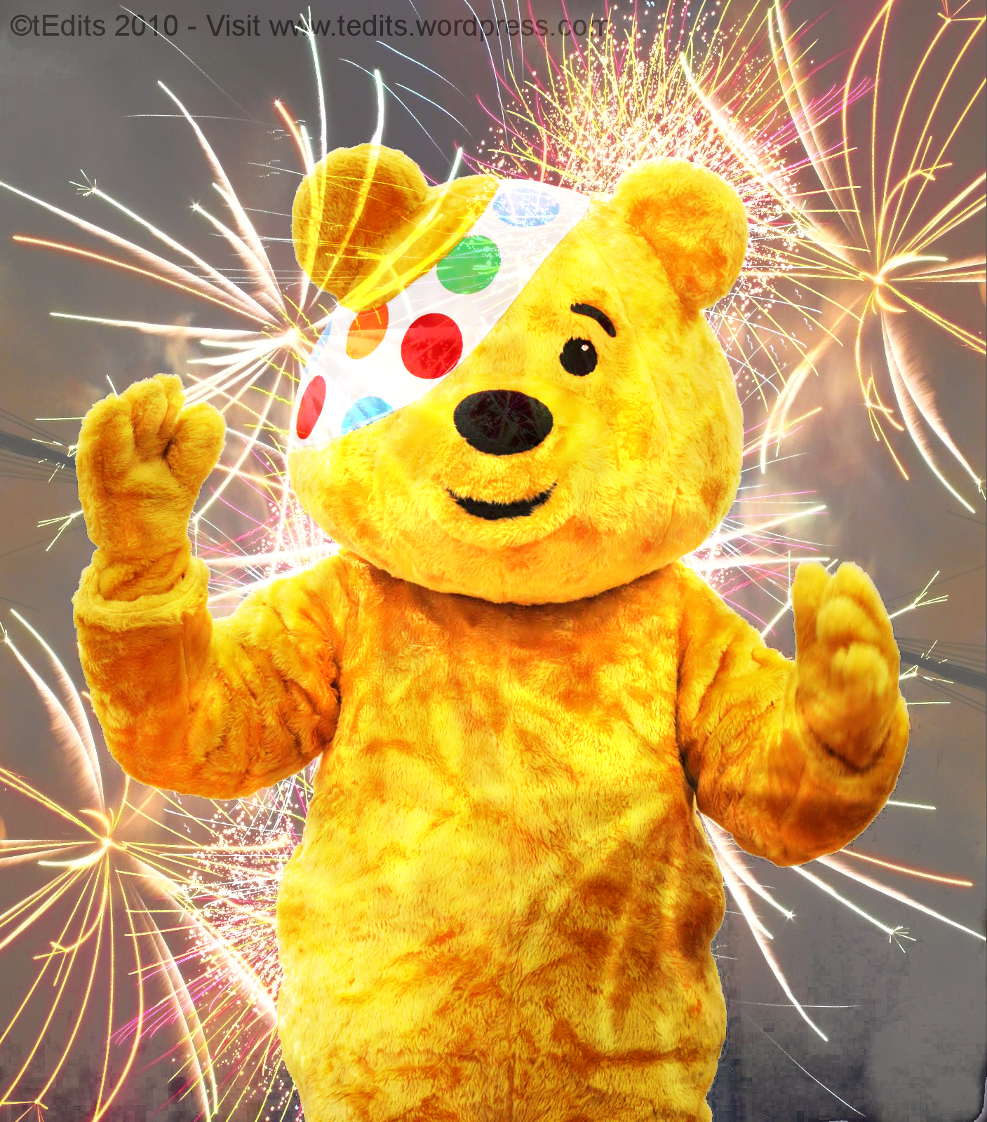 The best bear   Pudsey Photo 26791698 1407x1600