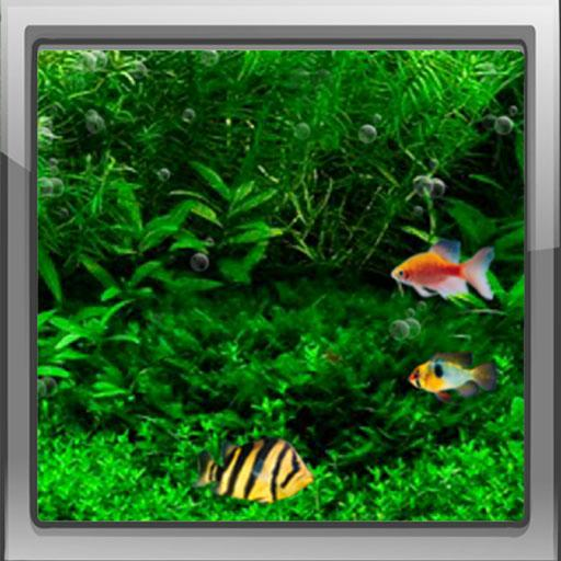 tags live wallpapers fish tank 3d live wallpaper fish fish tank 512x512