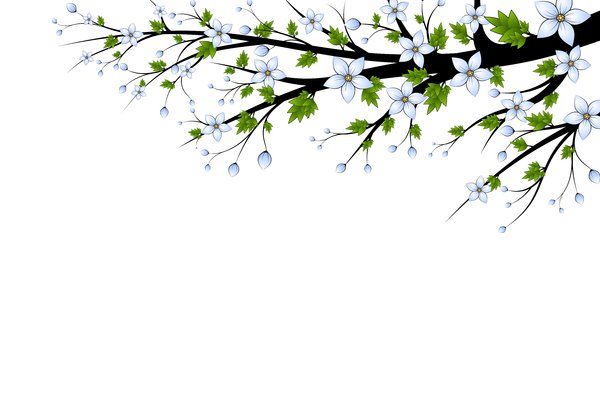 Blue Flowers Branch Branch with blue flowers on a white background 600x400