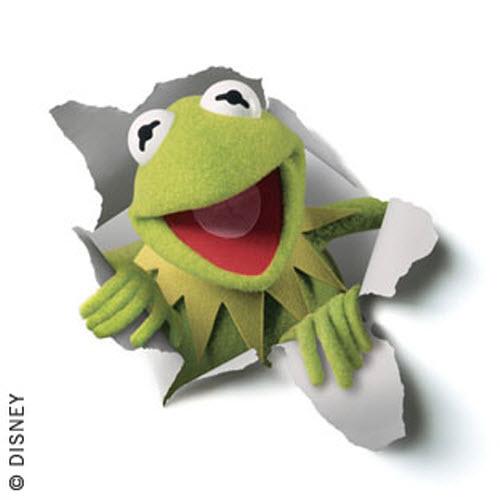 41+] Kermit The Frog Wallpaper On WallpaperSafari