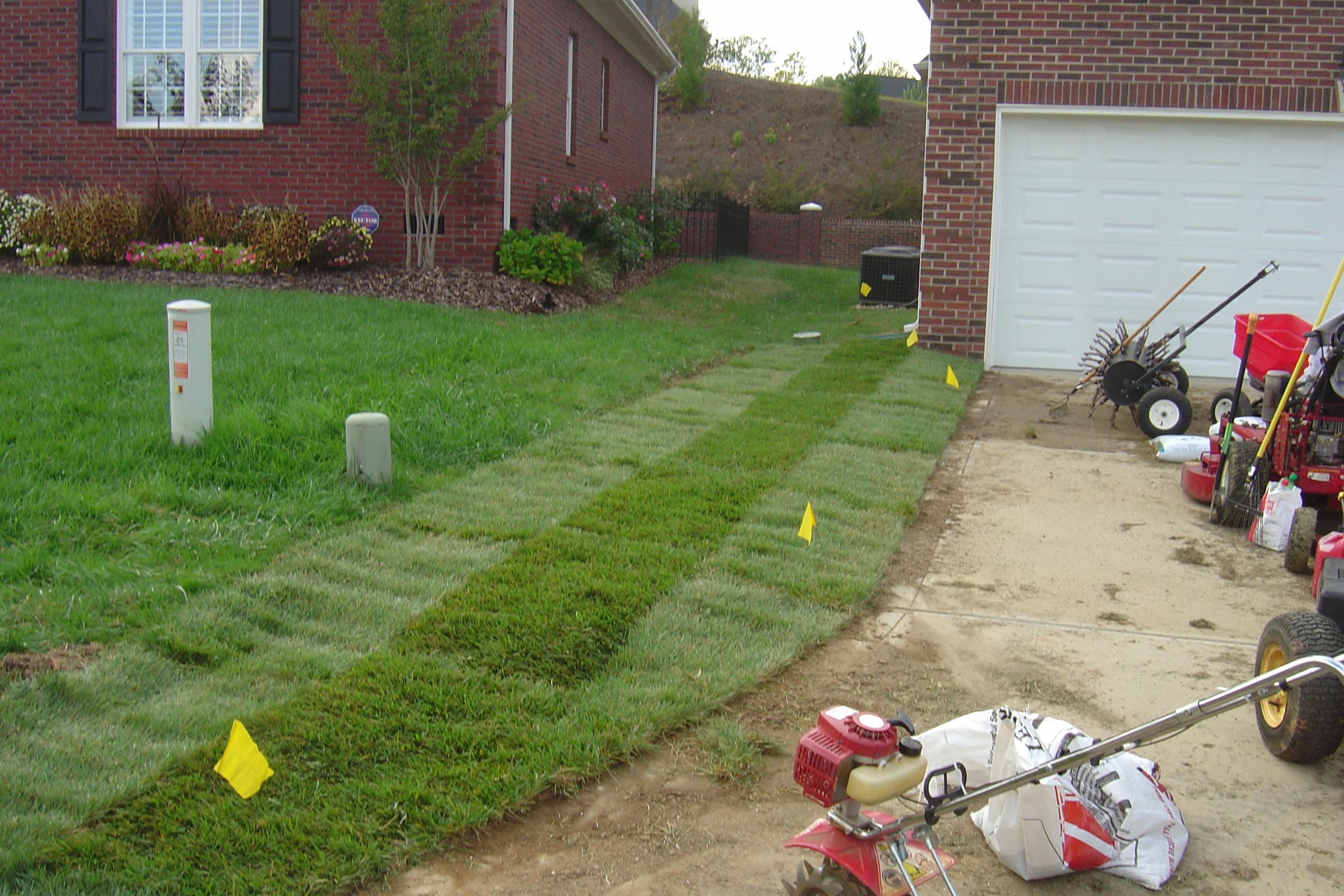 nc interior landscaping charlotte nc impact landscaping charlotte nc 2592x1728