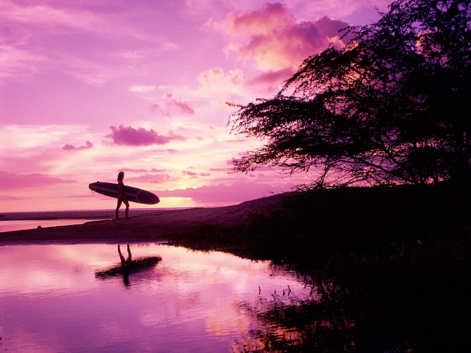 Best Surfing Wallpaper   Wallpaper High Definition High Quality 1600x1200