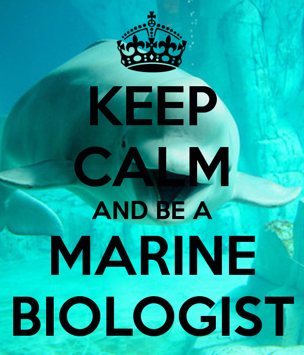 Gallery Marine Biology Wallpaper 600x700