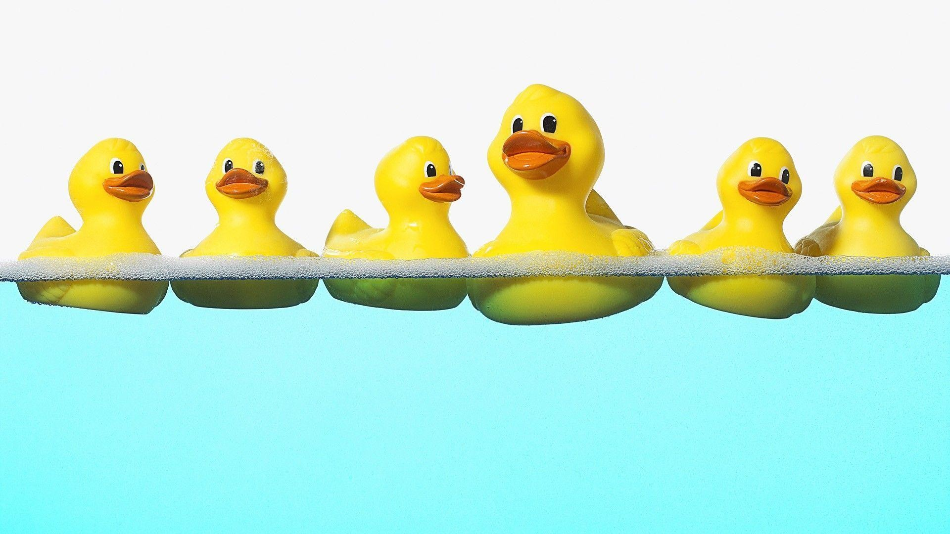 58 Rubber Duck Wallpapers on WallpaperPlay 1920x1080