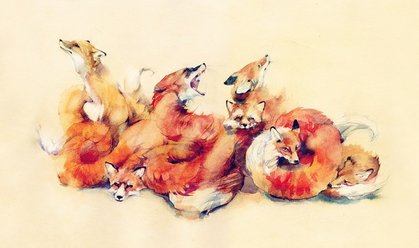 fox racing wallpapers free
