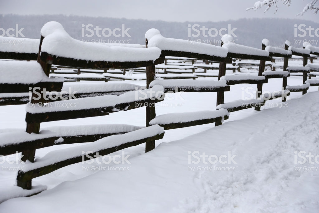 Closeup Of Snowy Corral Poles As A Winter Background Stock Photo 1024x682