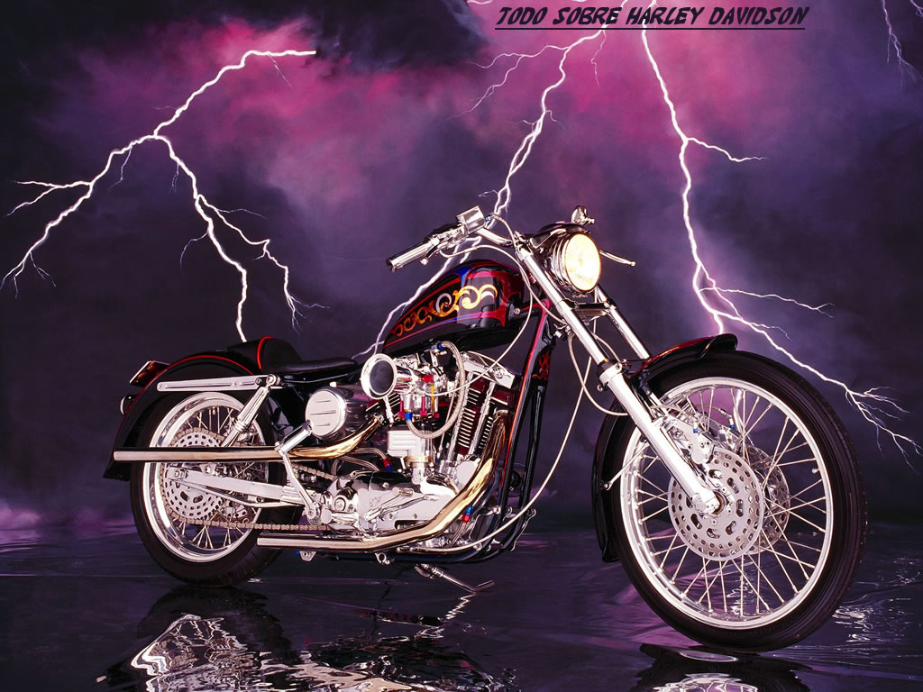 Harley Davidson Wallpapers And Screensavers: Harley Screensavers And Wallpaper Girls