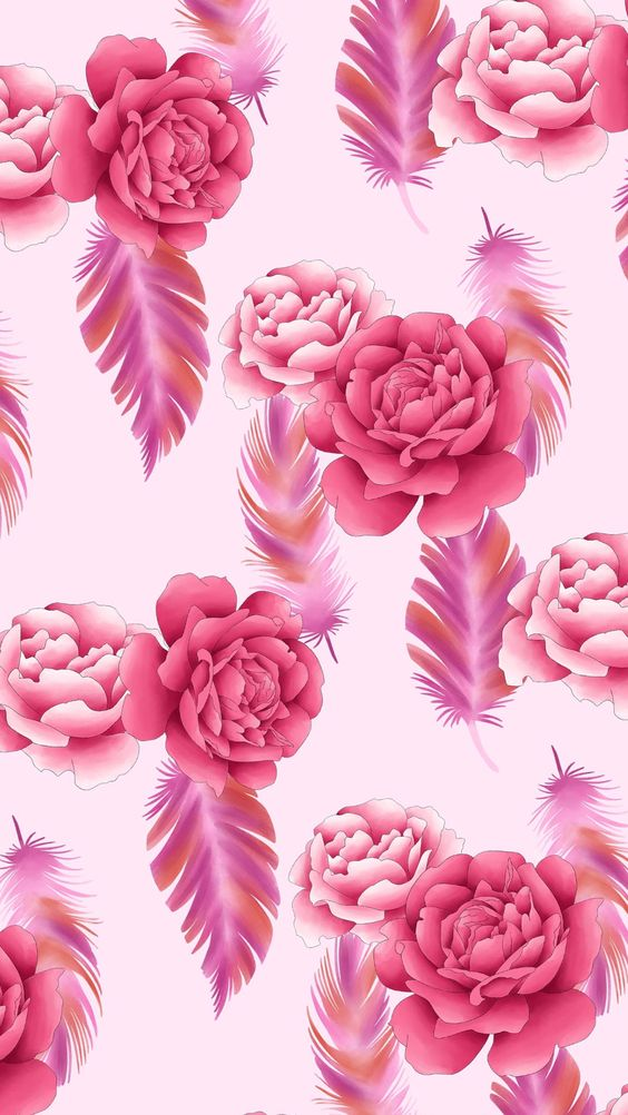 Rose Feather Wallpaper By Artist Unknown 564x1002