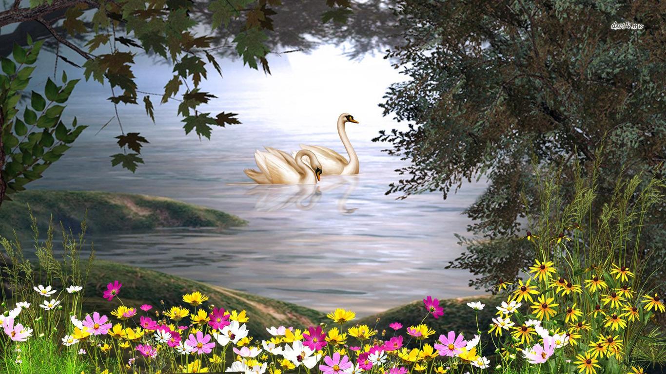 swan Computer Wallpapers Desktop Backgrounds 1366x768 ID481919 1366x768