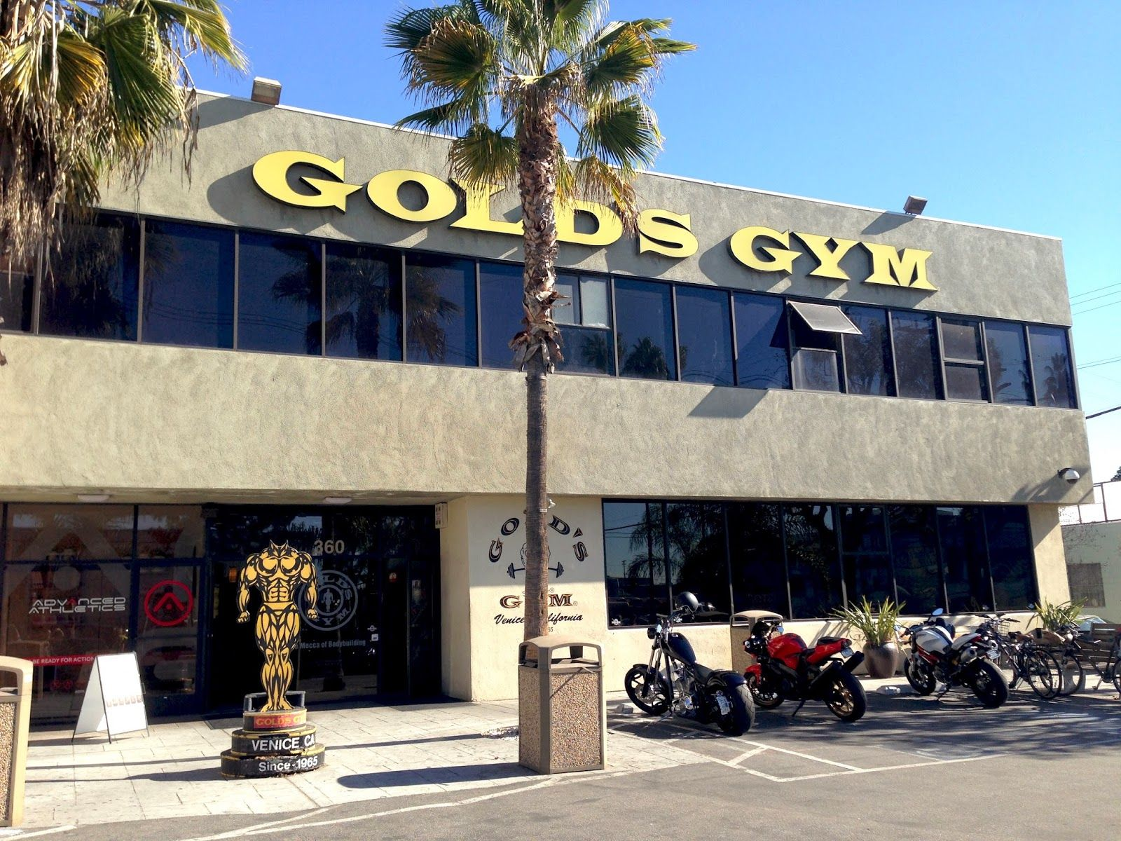 50 Golds Gym Venice Wallpapers   Download at WallpaperBro 1600x1200