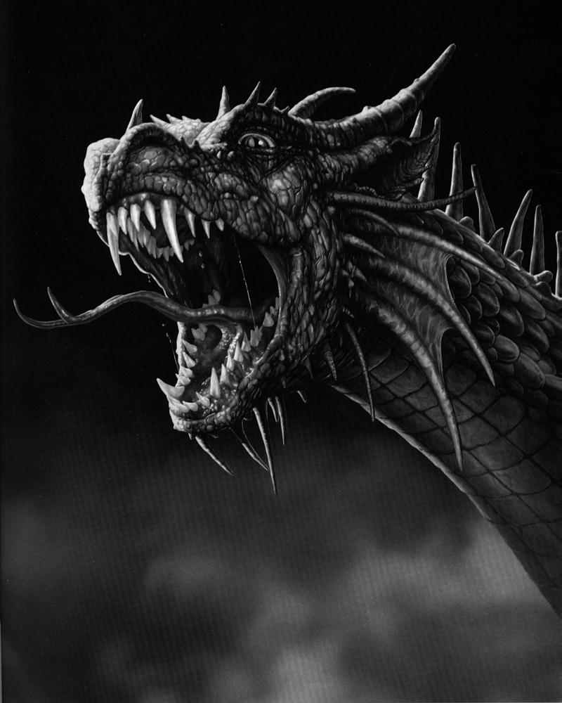 48+ Black Dragon Wallpapers on WallpaperSafari