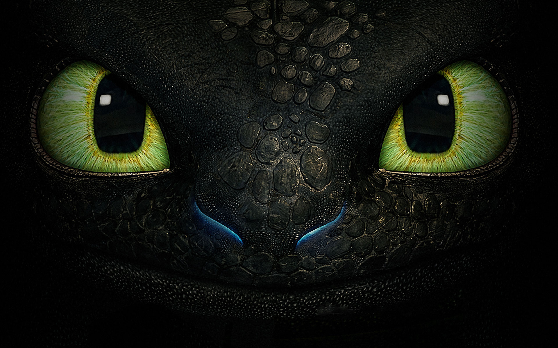 How to Train Your Dragon Toothless Face Exclusive HD Wallpapers 6845 1920x1200