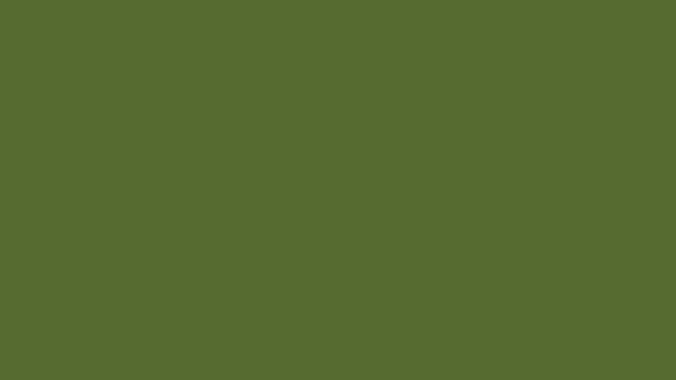 Olive Green Wallpaper 2560x1440