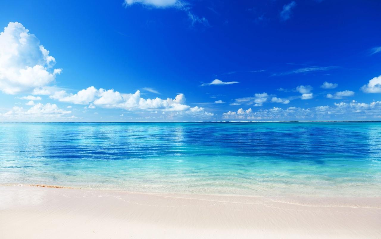 71 Free Caribbean Beach Wallpaper On Wallpapersafari