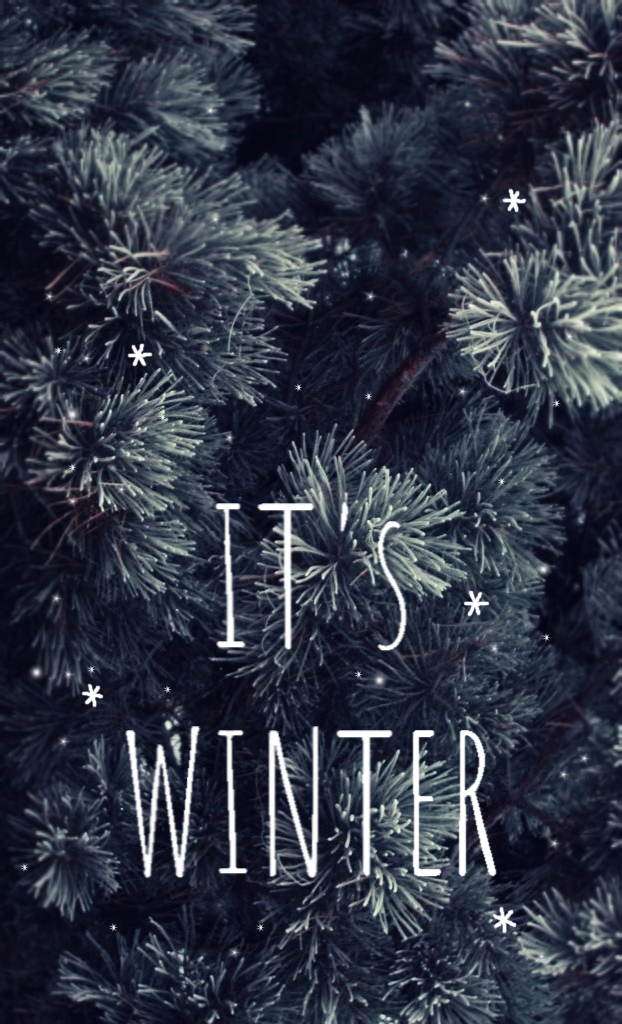 Its winter Winter wallpaper Iphone wallpaper winter Winter iphone 622x1024