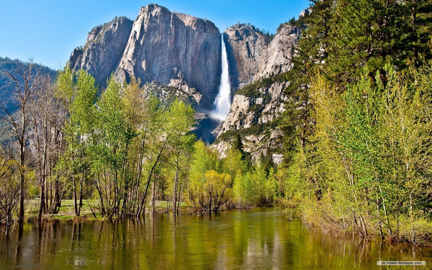 Wallpaper   Travel wallpaper   Yosemite National Park 1440x900