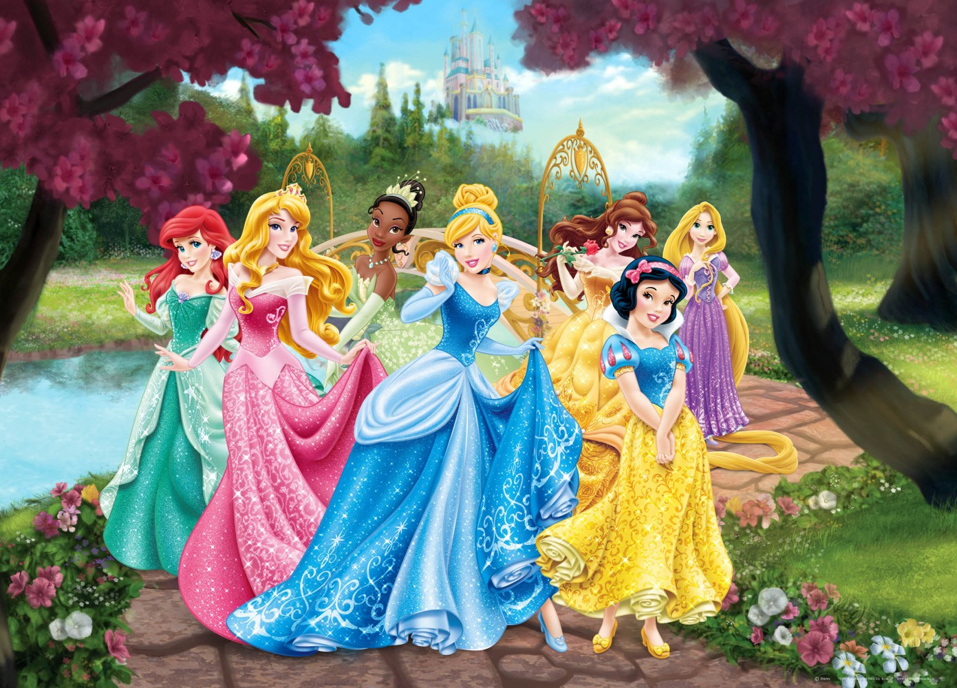 XXL poster wall mural wallpaper Disney princesses princess photo 160 1391x1000