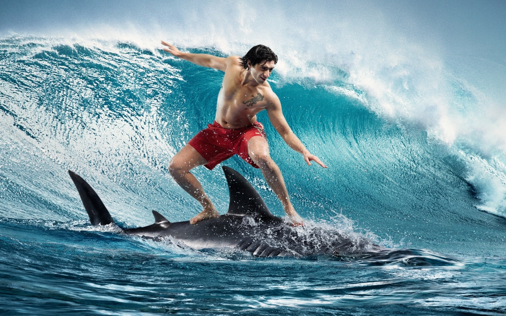 Boy On Shark Surfing 1680x1050 1094 HD Wallpaper Res 1680x1050 1680x1050