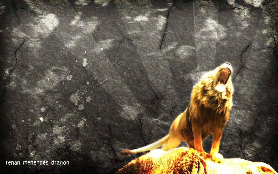 Aslan Roaring Wallpaper Bigking Keywords And Pictures