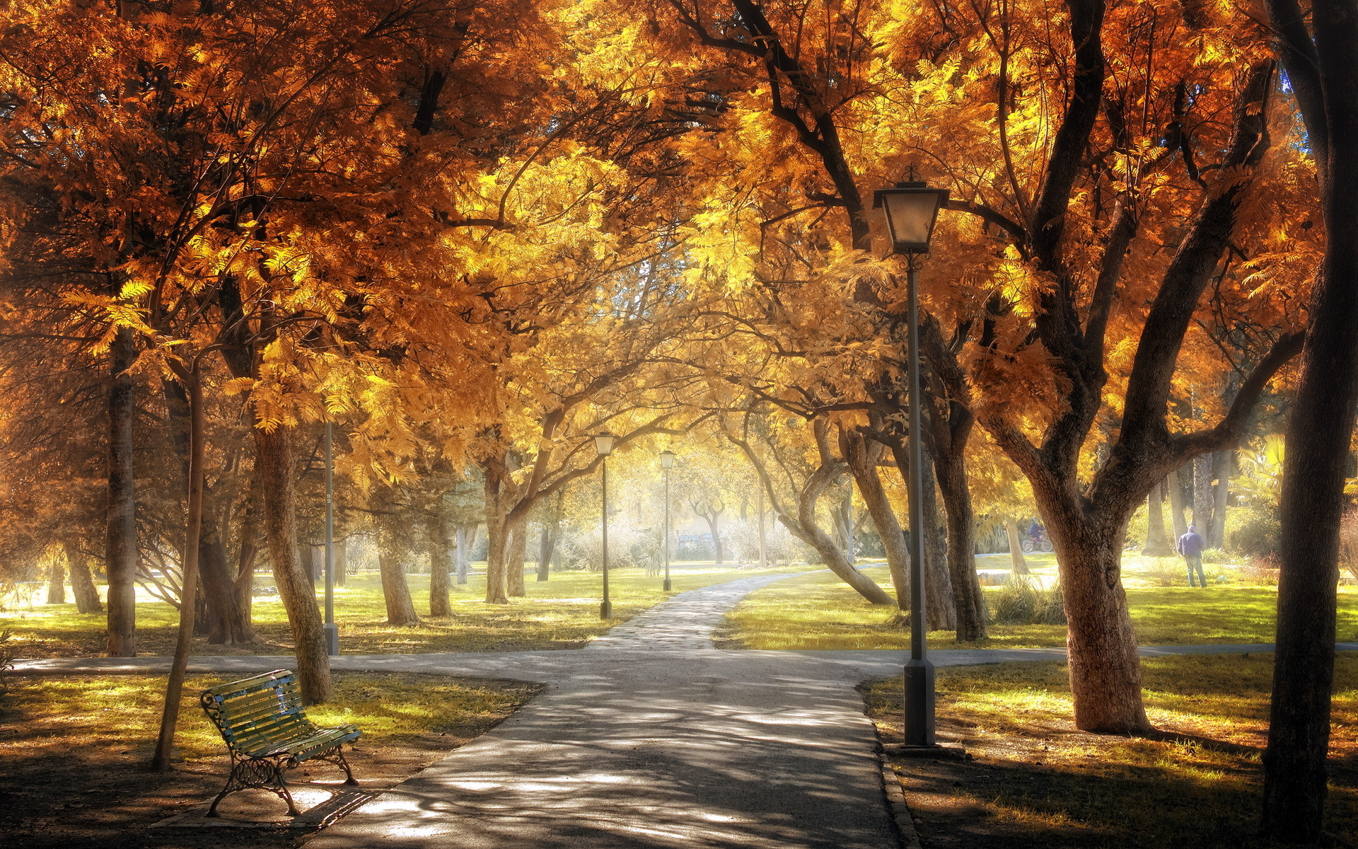 Central Park Background Download 1920x1200