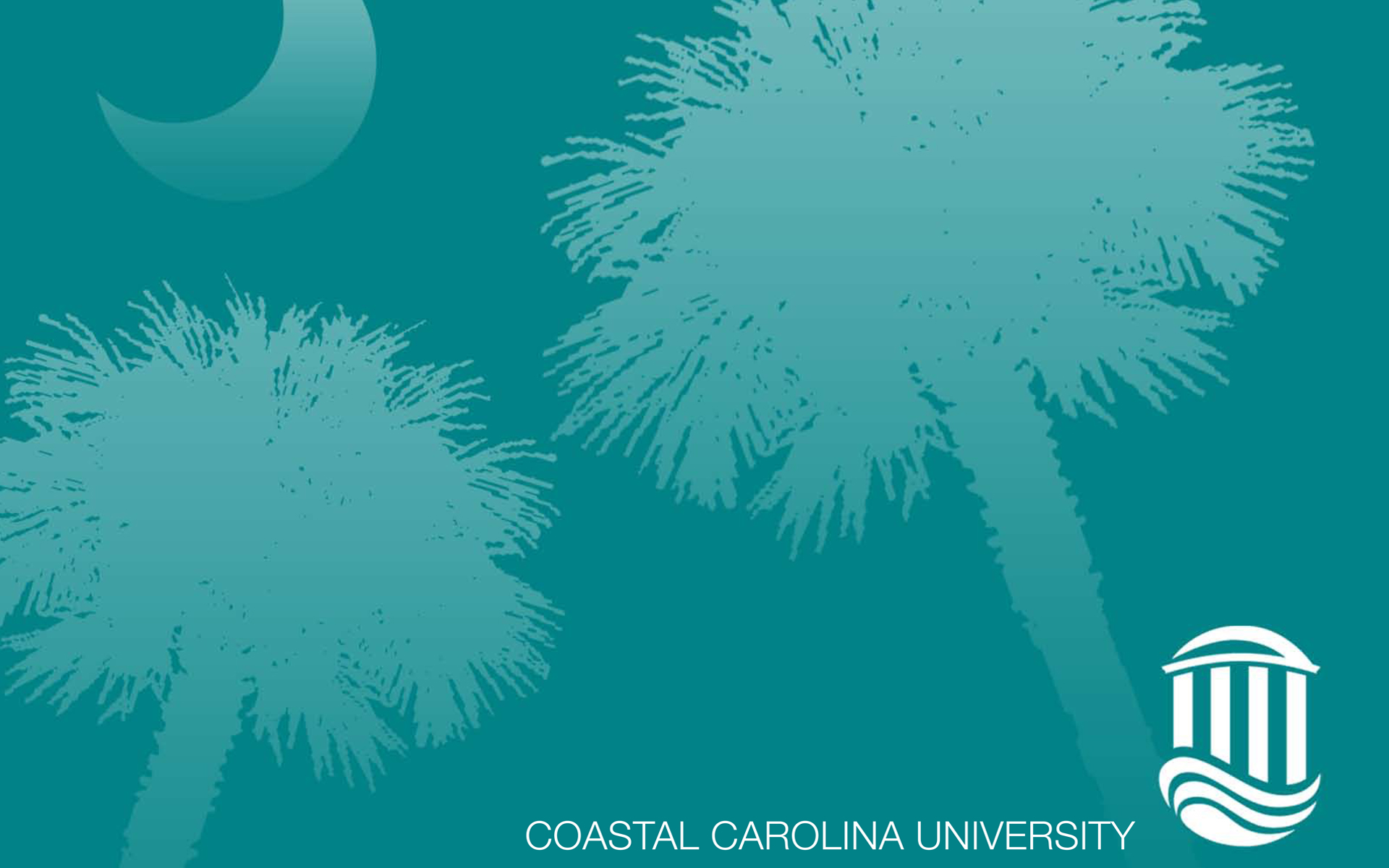 Coastal Carolina Wallpapers Wallpapersafari HD Wallpapers Download Free Images Wallpaper [1000image.com]