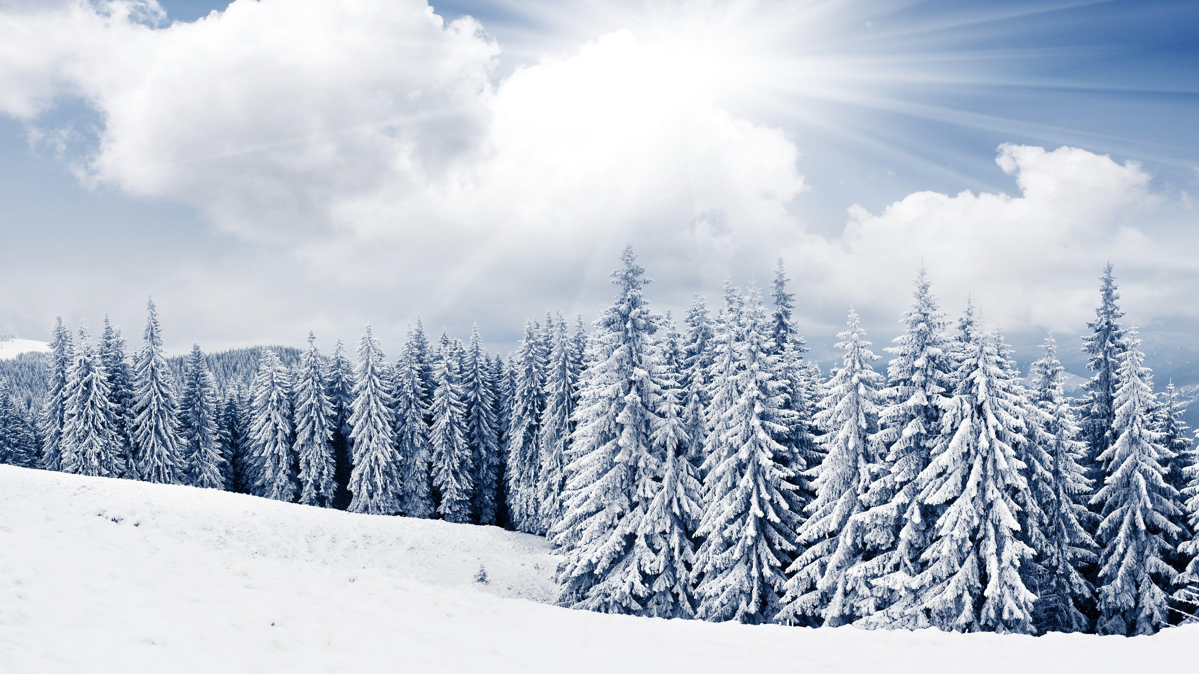 winter scenes desktop backgrounds 5000x2812 ScreenSaver in 5000x2812