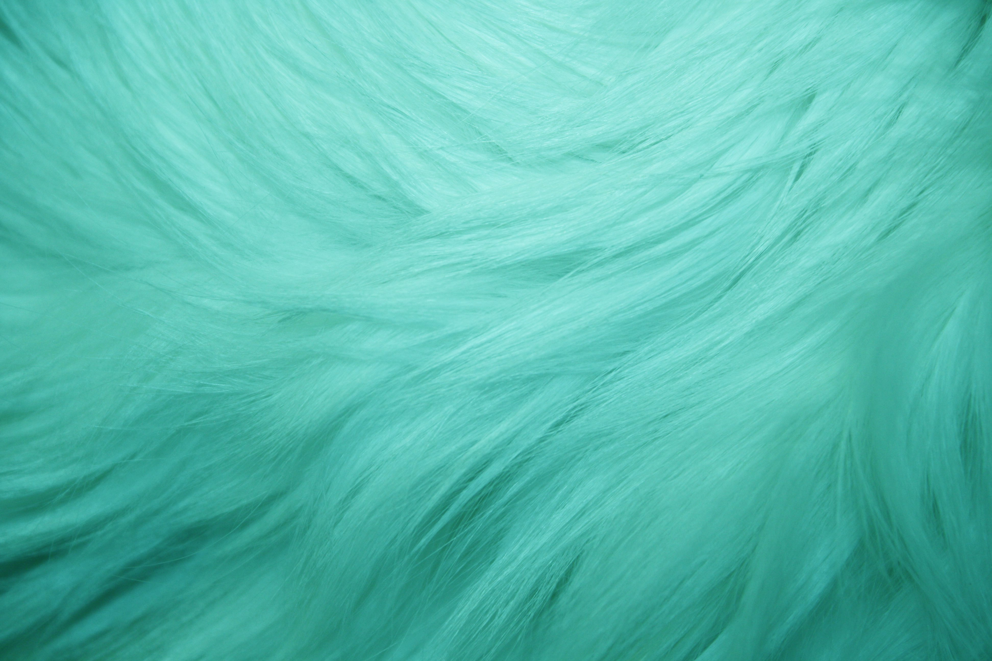 Teal Fur Texture   High Resolution Photo   Dimensions 3888 3888x2592