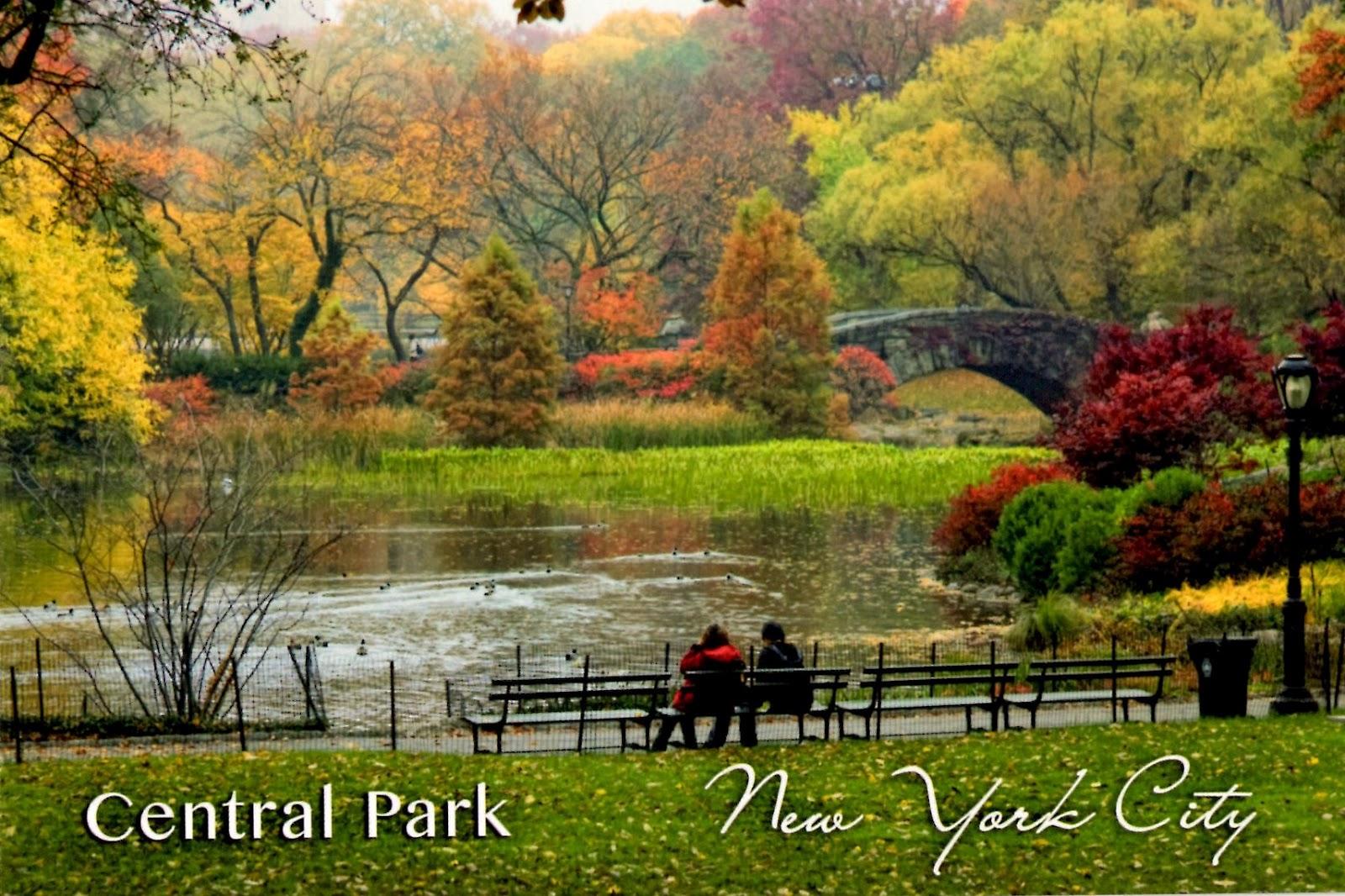Fall In Central Park 1600x1066 pixel Popular HD Wallpaper 5451 1600x1066