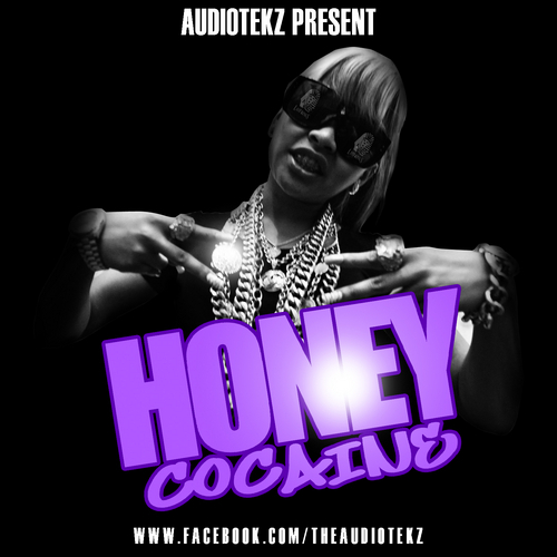 Honey Cocaine ft Tyga and More Honey Cocaine front largejpg 500x500