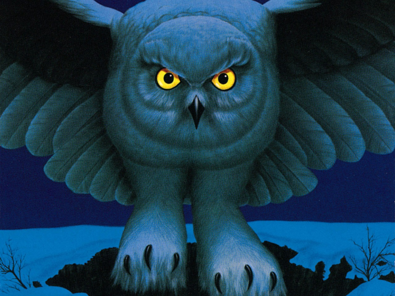 Birds Rush Wallpaper 1280x960 Birds Rush Owls Album Covers Alex 1280x960