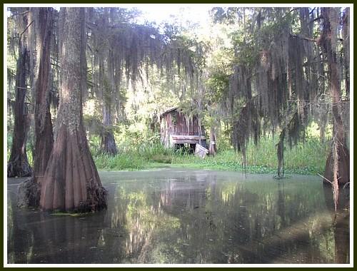 Louisiana Scenery Louisiana Scenery Wall...