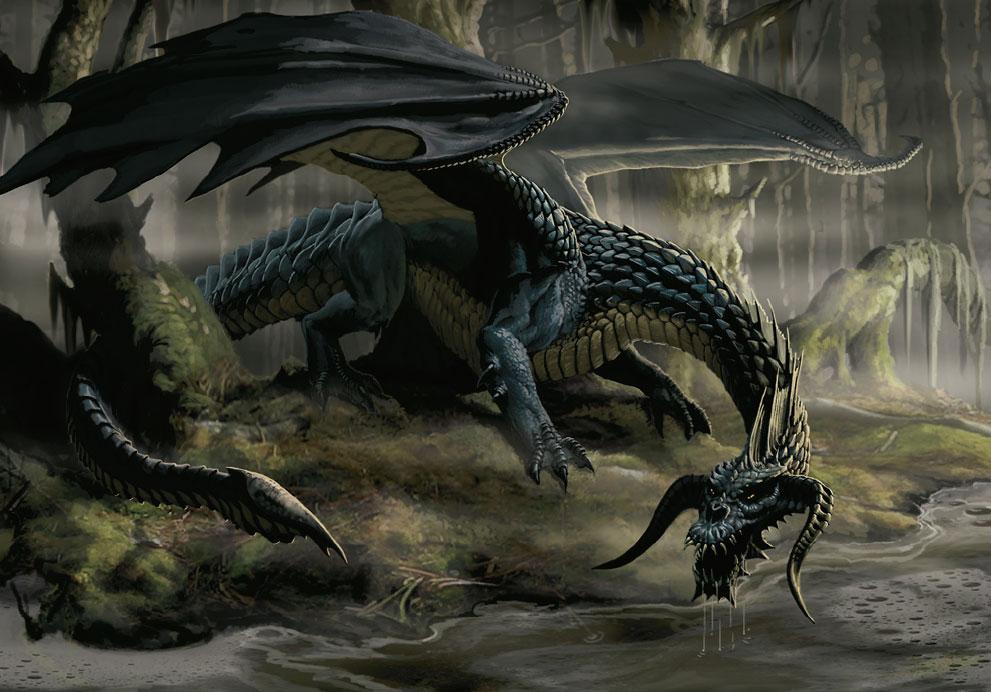 Black Dragon 38 Cool Hd Wallpaper Wallpaper 991x692
