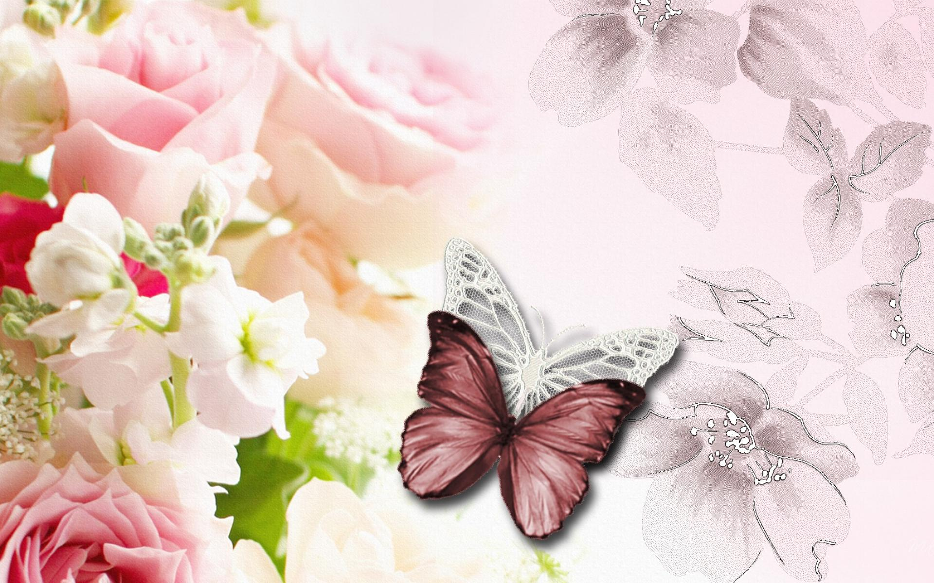 60 Pink Roses and Butterfly Wallpapers   Download at WallpaperBro 1920x1200