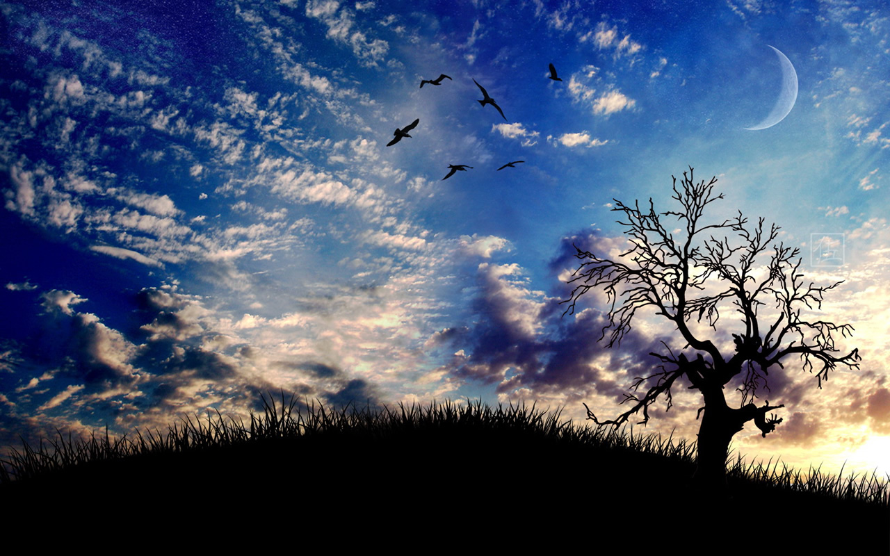Literary desktop wallpaper wallpapersafari - Wallpapers 1280x800 nature ...