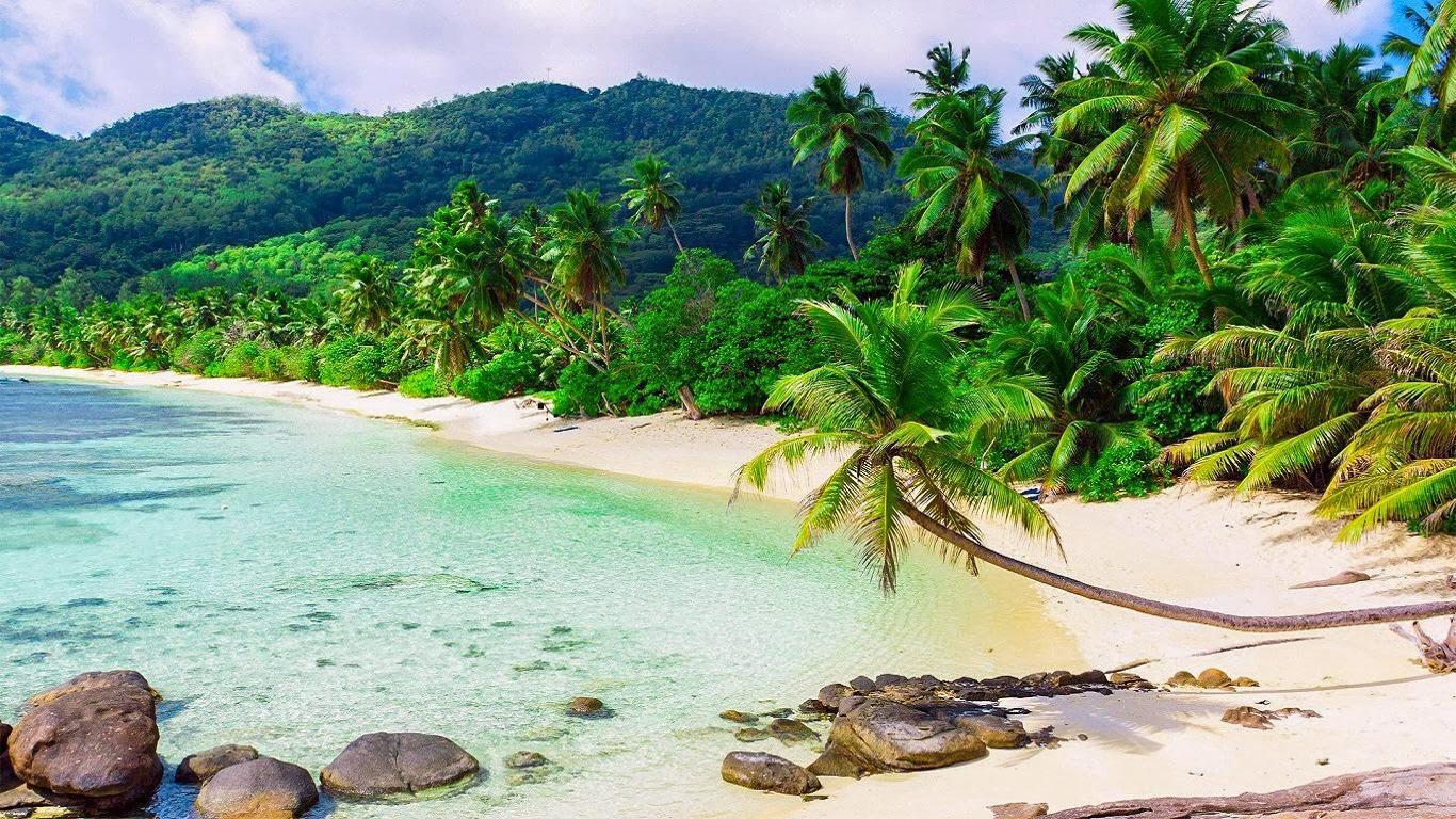 Tropical Lagoon HD Wallpaper 1366x768